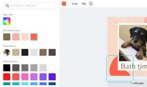 canva cambiare i colori della pagina